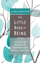 The Little Book of Being | Diana Winston